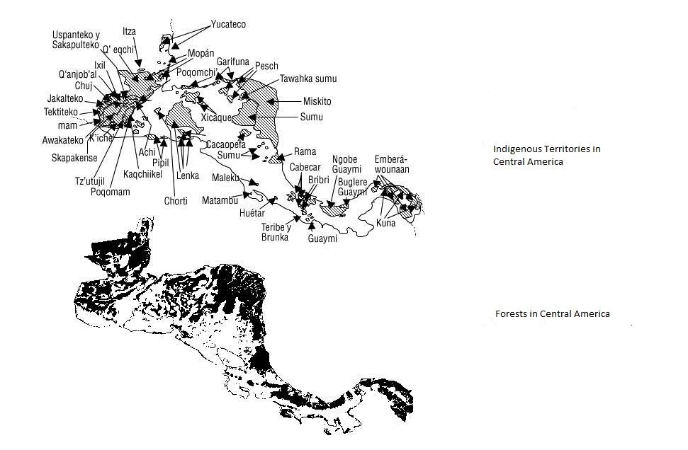 mapa bosques e indigenas